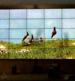 5x5 videowall bracket tv